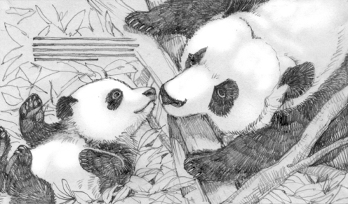 4Panda_spread2pencil