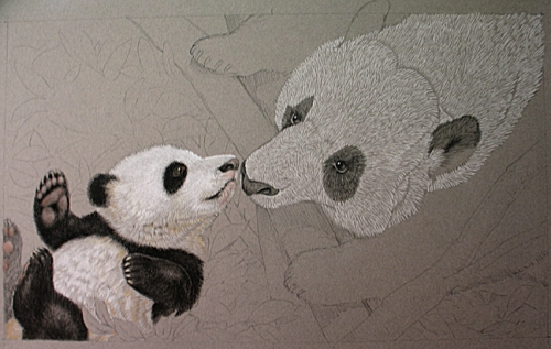 6Panda_in_progress_spread2