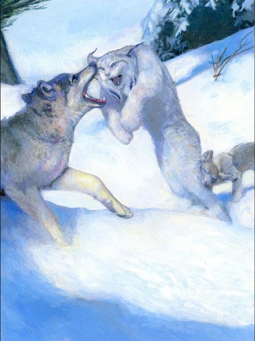 ericwolves
