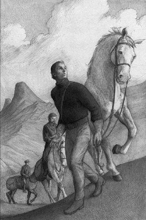 erocwalkinh horse