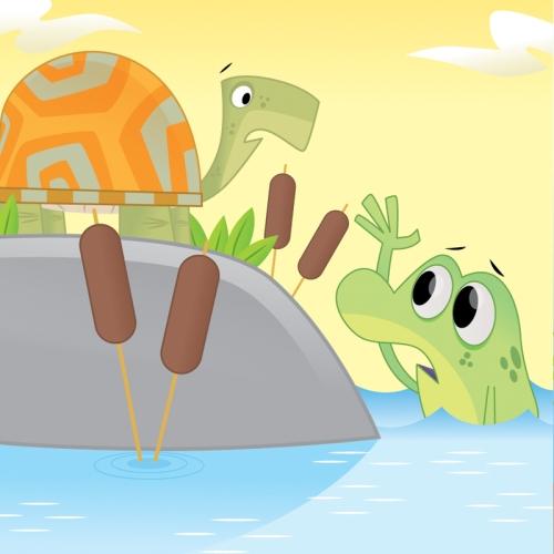 robfrog-turtle