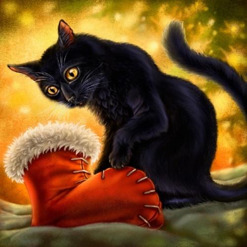 lwsm_cat_stocking_5769