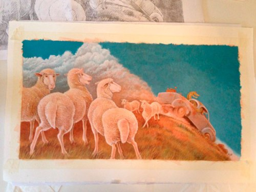16Sheep1stColour
