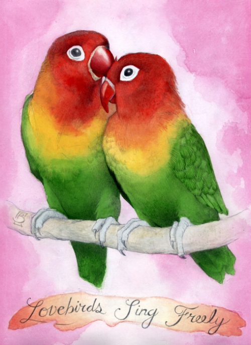 BrianBowes_Lovebirds