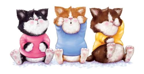 Allyn_kittens