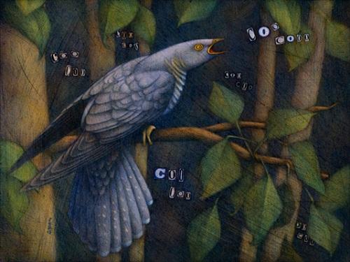 port-Cuckoo-bird