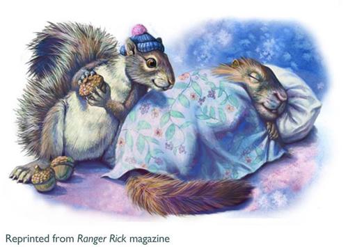 Ranger Rick Magizein squirrels500