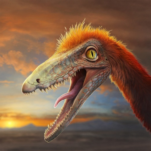 Coelophysis_Cover_Final
