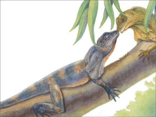 lizard kiss