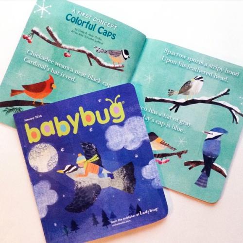 baby bug Jan '16