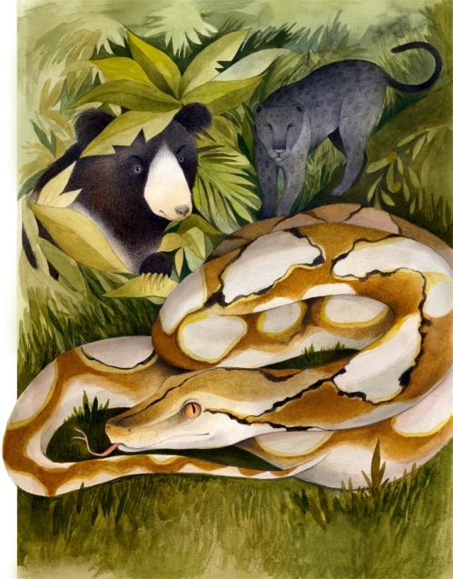 Ester Garcia Jungle book_low res (3)