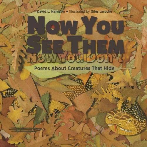 now-you-see-them-cover