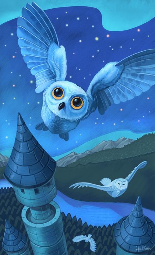 flying-owl