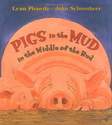 lynn-plourde-pigs-in-mud